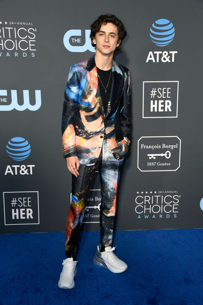 SANTA MONICA, CA - JANUARY 13:  Timothee Chalamet attends the 24th annual Critics' Choice Awards at Barker Hangar on January 13, 2019 in Santa Monica, California.  (Photo by Frazer Harrison/Getty Images)